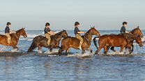 King's Troop Royal Horse Artillery train on beach
