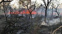 Quem são os voluntários que combatem incêndios na Amazônia