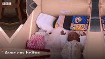 Les boîtes pour bébés peuvent-elles sauver des vies dans les bidonvilles du Kenya ?