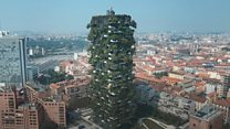 Could vertical forests improve our cities and health?