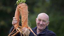"""""""Я выращиваю самые большие овощи в мире"""""""
