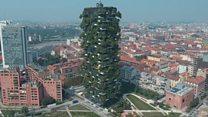 Вертикалне шуме