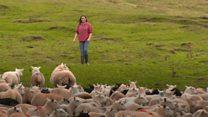 Farming 'more uncertain than ever'