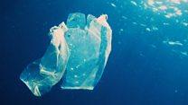 Как пластиковые пакеты должны были спасти планету