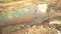 Nigeria's oil spills 'environmental genocide'