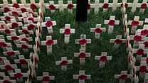 Wales opens national Remembrance field