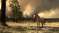 Bushfires rage across Australia's east