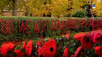 'Our knitted poppies are getting quite famous'
