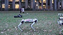 Backflipping robots