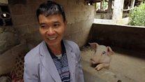 中国非洲猪瘟疫情:只剩一只猪的广西猪农