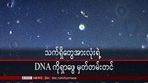 ဆေးဝါးသစ်ဖော်ဖို့ သက်ရှိတွေအားလုံးရဲ့ DNA ကို မှတ်တမ်းတင်