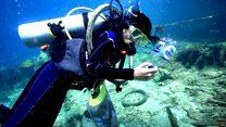 فتاة  إندونيسية تنظف البحر وتعيد للشعاب المرجانية جمالها