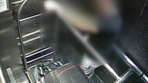 CCTV shows timeline of British backpacker's murder