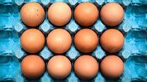 鸡蛋可以预防流感吗?