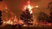 Footage shows bushfire 'crowning' in Australia