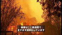 森林火災続くオーストラリア BBC気象予報士が要因解説