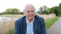 China must act on climate change - Attenborough