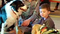 The dog-friendly sessions helping children to read