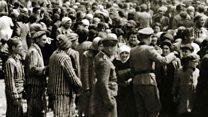 ¿Qué pasó en el campo de concentración de Auschwitz?