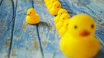 Million dollar idea: The rubber duck