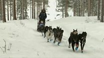 Doggy dramas and toilet trouble during extreme race