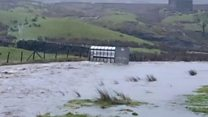 Footage shows cattle trailer blown away in Yorkshire dales