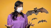 خمس شائعات خاطئة عن فيروس كورونا