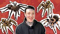 مکڑیوں کے خوف سے 32 مکڑیوں کے ساتھ سونے تک کا سفر