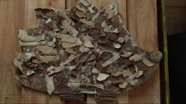 Wooden Dementia
