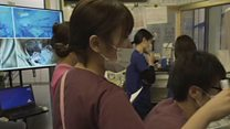 Japan trying to stay afloat in coronavirus battle