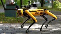 Robot dog enforces social distancing in Singapore