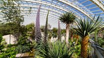 How Botanic Garden of Wales has grown in 20 years