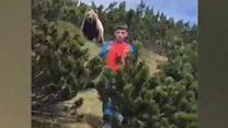 Italian boy escapes brown bear