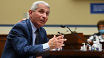 Dr Fauci is asked if protests spread coronavirus