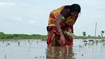 The woman farmer who beat debt and stigma
