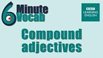 6minvocab_li_8_compound_adjectives.jpg