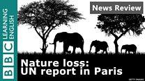 NR_UN report_thumbnail.jpg