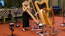 Ruth on bray harp