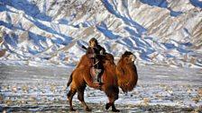 Human Planet: Deserts / Gobi Desert, Mongolia