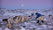 Human Planet: Arctic / Ilulissat, western Greenland