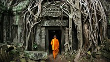 Human Planet: Jungles / Temple at Angkor Wat, Cambodia
