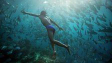 Human Planet: Oceans / Sabah, Borneo