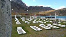 Frank Wild's grave