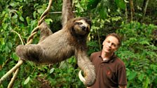Chris Packham with a three-toed sloth