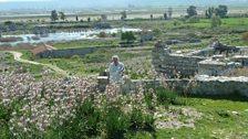 Làrach Miletus