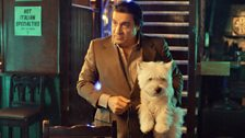 Frank Tagliano, played by Steven Van Zandt, with his dog Lily.
