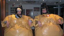 Let's Sumo Photo Gallery - 33