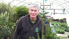 Rudie Bertins from Rudies Roots Nurseries