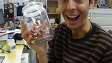 How Many Sweets In The Jar?