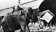 Orwell's essay 'Shooting an Elephant' was published in 1936